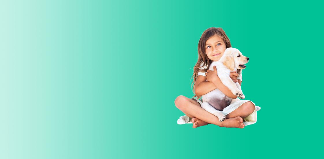 Blije honden in een hangmat